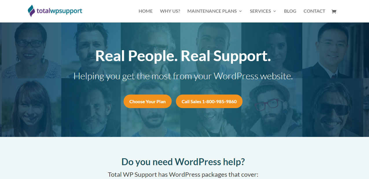 Total WP Support - 15+ WordPress Maintenance and Support Services [Updated 2021]