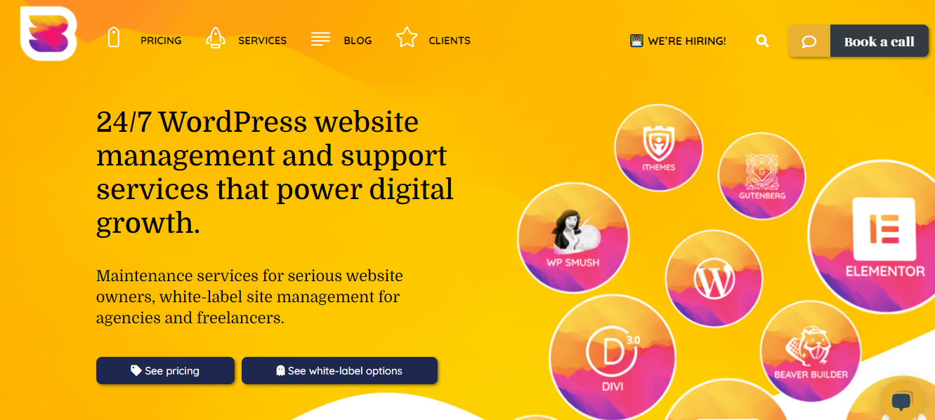 WP Buff - 15+ WordPress Maintenance and Support Services [Updated 2021]