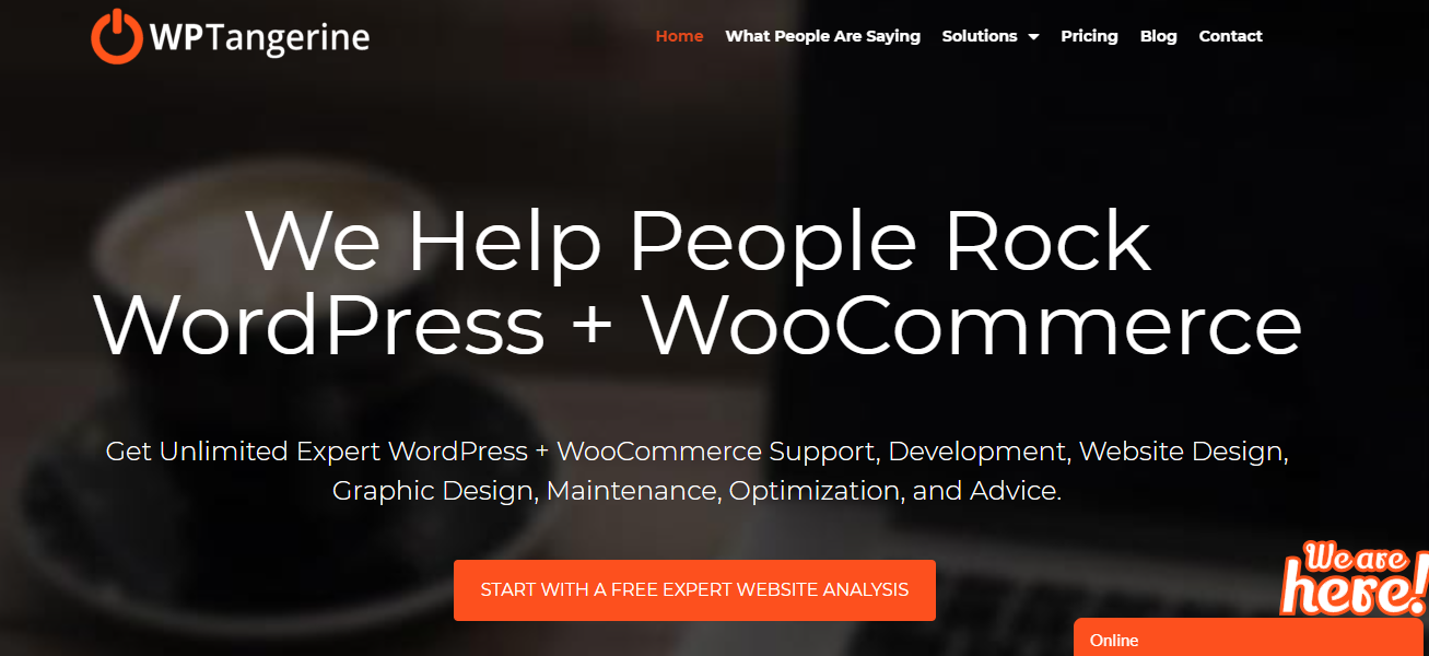 WP Tangerine - 15+ WordPress Maintenance and Support Services [Updated 2021]